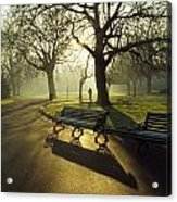 Dublin - Parks, St. Stephens Green Acrylic Print by The Irish Image Collection