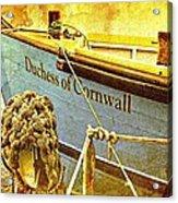 Duchess Of Cornwall Acrylic Print