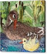 Duck And Duckling Acrylic Print