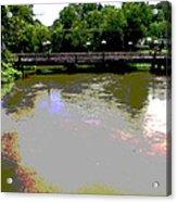 Ducktown Polarized River  Acrylic Print