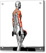 Dumbbell Step-up Exercise (part 2 Of 2) Acrylic Print