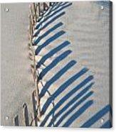 Dune Fence Graphic Acrylic Print