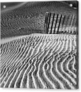 Dune Patterns Acrylic Print by Steven Ainsworth