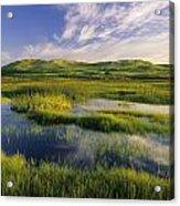Dune Pond, Brackley, Prince Edward Acrylic Print