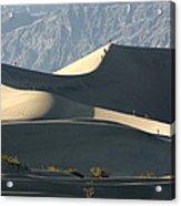 Dune Walkers Acrylic Print