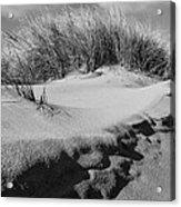 Dunes On A Staten Island Beach Acrylic Print