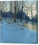 Dusk In The Woods Acrylic Print