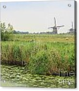Dutch Landscape With Windmills And Cows Acrylic Print