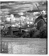 Dutch Windmills Acrylic Print