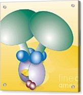 Dynein Complex Acrylic Print by Oak Ridge National Laboratory