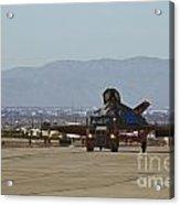 Eagle Landing In Vegas Acrylic Print