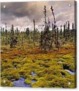 Eagle Plains, Yukon Territory, Canada Acrylic Print