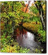 Early Autumn In Maine Acrylic Print