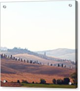 Early Morning In Tuscany Acrylic Print