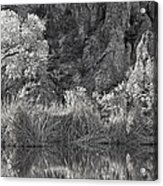 Early Morning Light Black And White Acrylic Print