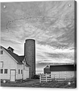 Early Morning On The Farm Bw Acrylic Print