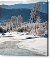 Early Morning, Yampa River, Steamboat Springs Acrylic Print