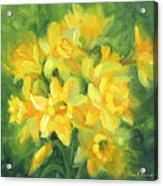 Easter Daffodils Acrylic Print