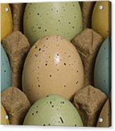 Easter Eggs Carton 1 A Acrylic Print