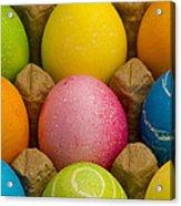 Easter Eggs Carton 2 A Acrylic Print