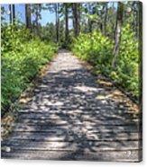 Easy Path Acrylic Print