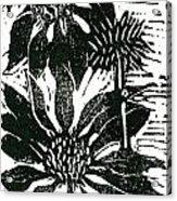 Echinacea Block Print Acrylic Print