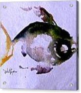 Echo Fish Fourteen Acrylic Print