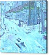Eel Bay Trail Acrylic Print