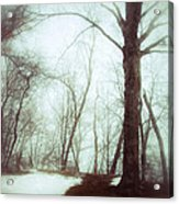 Eerie Winter Woods Acrylic Print