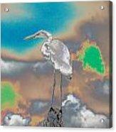 Egrit Acrylic Print