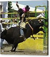 Rodeo Eight Seconds Acrylic Print