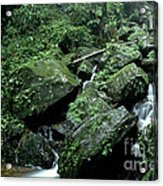 El Yunque National Forest Rocks And Waterfall Acrylic Print by Thomas R Fletcher