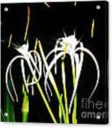 Elaines Flowers Acrylic Print
