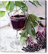Elderberries 04 Acrylic Print
