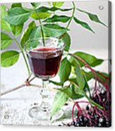 Elderberries 05 Acrylic Print