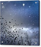 The Night Was Electrically Charged Acrylic Print