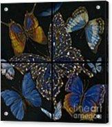 Elena Yakubovich Butterfly 2x2 Acrylic Print