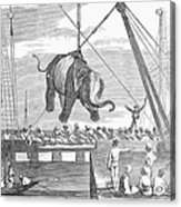 Elephant Hoist, 1858 Acrylic Print