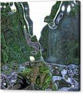 Elkhorn Dented Acrylic Print