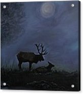 Elks Love Acrylic Print