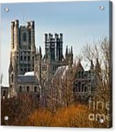 Ely Cathedral Scenic Acrylic Print