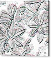 Embossed Crotons Acrylic Print