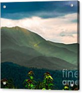 Emerald And Gold Acrylic Print