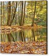 Emerald Creek 2 Acrylic Print