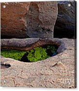 Emerald Pool Acrylic Print