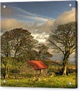 Emsworthy Barn Acrylic Print