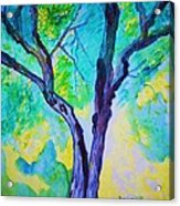 Enbracing Trees Acrylic Print