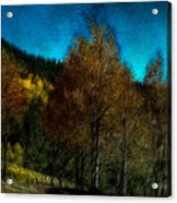 Enchanted Evening In The Forest Acrylic Print