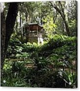 Enchanted Forrest II Acrylic Print