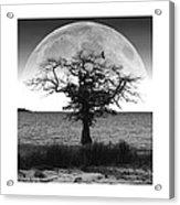 Enchanted Moon Acrylic Print